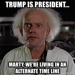 Back To The Future Doctor - Trump is president... Marty, we're living in an alternate time line