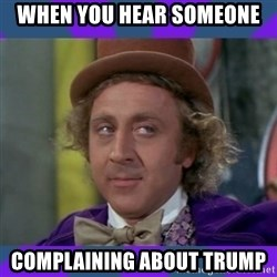 Sarcastic Wonka - when you hear someone complaining about trump