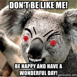 Abortion Koala - Don't be like me! Be happy and have a wonderful day!