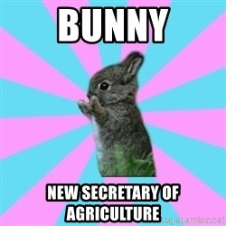 yAy FoR LifE BunNy - Bunny New Secretary of Agriculture