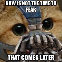 bane cat - Now is not the time to fear That comes later