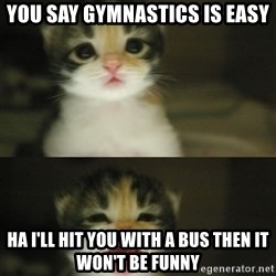 Adorable Kitten - you say gymnastics is easy Ha I'll hit you with a bus then it won't be funny
