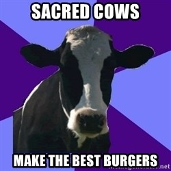 Coworker Cow - sacred cows make the best burgers