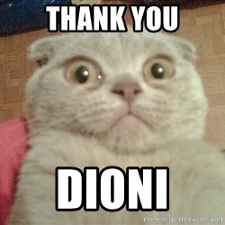 GEEZUS cat - thank you Dioni