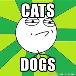 Challenge Accepted 2 - cats dogs
