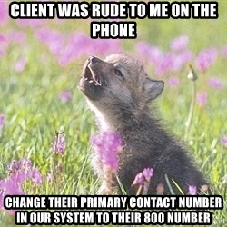 Baby Insanity Wolf - client was rude to me on the phone change their primary contact number in our system to their 800 number