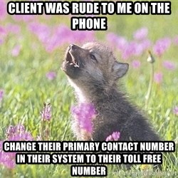 Baby Insanity Wolf - client was rude to me on the phone change their primary contact number in their system to their toll free number