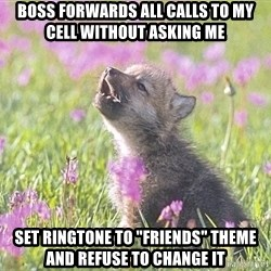 """Baby Insanity Wolf - Boss forwards all calls to my cell without asking me Set ringtone to """"friends"""" theme and refuse to change it"""