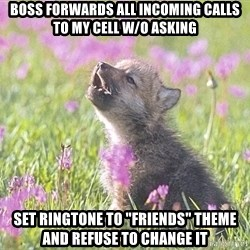 """Baby Insanity Wolf - boss forwards all incoming calls to my cell w/o asking Set ringtone to """"friends"""" theme and refuse to change it"""