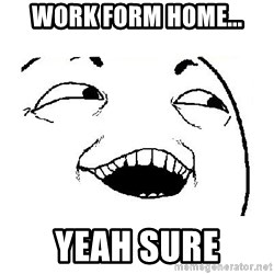 Yeah sure - Work form home... Yeah sure
