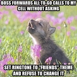 """Baby Insanity Wolf - Boss forwards all to-go calls to my cell without asking Set ringtone to """"friends"""" theme and refuse to change it"""