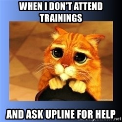 puss in boots eyes 2 - When I don't attend trainings And ask Upline for Help