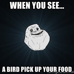 Forever Alone Date Myself Fail Life - When you see... a bird pick up your food