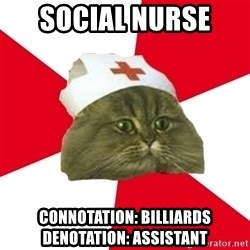Nursing Student Cat - social nurse  connotation: Billiards   denotation: assistant