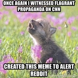 Baby Insanity Wolf - once again i witnessed flagrant propaganda on cnn created this meme to alert reddit