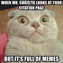 GEEZUS cat - When Mr. Christie looks at your citation page but it's full of memes