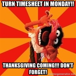 Animal Muppet - Turn Timesheet in Monday!! Thanksgiving Coming!!! Don't Forget!
