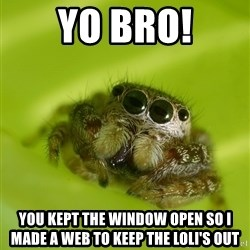 The Spider Bro - Yo Bro! You kept the window open so I made a web to keep the loli's out