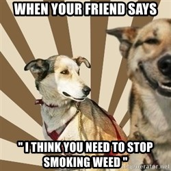 "Stoner dogs concerned friend - when your friend says "" I think you need to stop smoking weed """