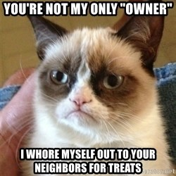 "Grumpy Cat  - You're not my only ""owner"" I whore myself out to your neighbors for treats"