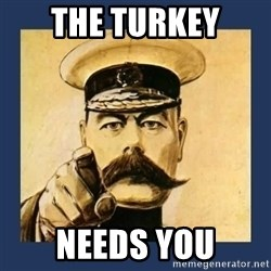 your country needs you - The Turkey Needs you