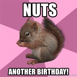 Shipper Squirrel -  nuts another birthday!