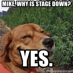dogweedfarm - Mike, why is Stage down? Yes.