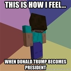 Depressed Minecraft Guy - This is how I feel... When Donald Trump becomes president