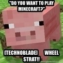 "Minecraft PIG - ""Do you want to play Minecraft?"" [TechnoBlade]       WHEEL STRAT!!"