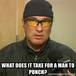 Steven Seagal Mma -  What does it take for a man to punch?
