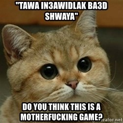 "Do you think this is a motherfucking game? - ""tawa in3awidlak ba3d shwaya"" Do you think this is a motherfucking game?"