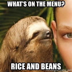 Whispering sloth - What's on the menu? Rice and Beans