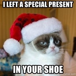 Grumpy Cat Santa Hat - I left a special present in your shoe