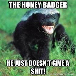 Honey Badger Actual - The Honey Badger He just doesn't give a shit!