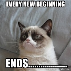 Grumpy cat 5 - EVERY NEW BEGINNING  ENDS...................