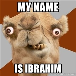 Crazy Camel lol - my name is ibrahim