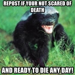 Honey Badger Actual - repost if your not scared of death And ready to die any Day!