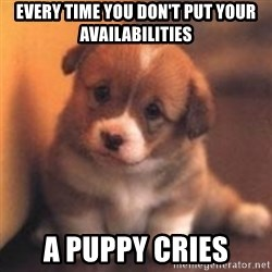 cute puppy - EVERY TIME YOU DON'T PUT YOUR AVAILABILITIES A PUPPY CRIES