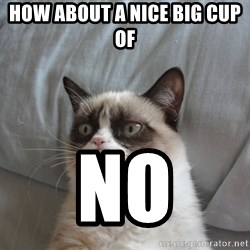 Grumpy cat 5 - How about a nice big cup of  no