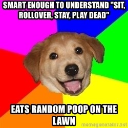 """Advice Dog - Smart enough to understand """"sit, rollover, stay, play dead"""" eats random poop on the lawn"""