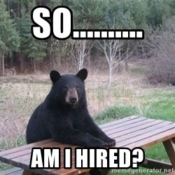 Patient Bear - so.......... am I hired?