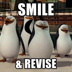 Madagascar Penguin - SMILE  & REVISE