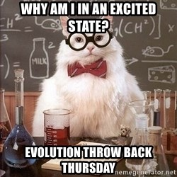 Chemistry Cat - Why am I in an excited state? Evolution Throw Back Thursday
