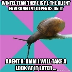 Synesthete Snail - Wintel team there is P1, the client environment depends on it Agent X: hmm i will take a look at it later ...