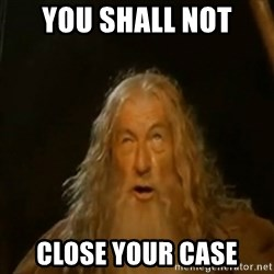 Gandalf You Shall Not Pass - You shall not close your case