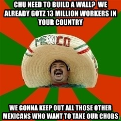 Successful Mexican - chu need to build a wall?  We already gotz 13 million workers in your country we gonna keep out all those other mexicans who want to take our chobs