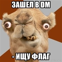 Crazy Camel lol - зашел в DM - ищу флаг