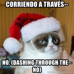 Grumpy Cat Santa Hat - Corriendo a través--  No. (Dashing through the-- No)
