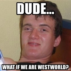 Stoned Guy [Meme] - Dude... what if we are westworld?