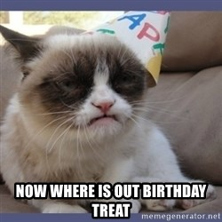 Birthday Grumpy Cat -  NOW WHERE IS OUT BIRTHDAY TREAT